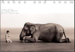 Child_reading_to_elephant